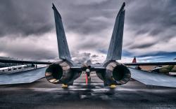F14 Tomcat Rear