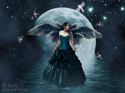 Dark Fairy Wallpapers2