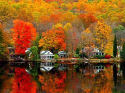 Fall Scenery 9 Thumb