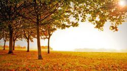 Fall Scenery 36 Thumb