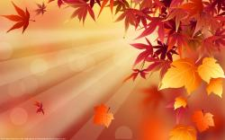 Here are great Fall Wallpaper. It is going to be a great Fall this year.