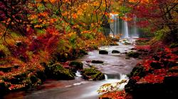 hd wallpapers nature fall6