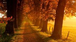 Fantastic Autumn Landscape Wallpaper