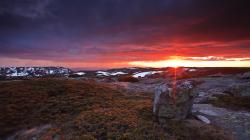 """Download the following Fantastic Hilltop Wallpaper 37376 by clicking the orange button positioned underneath the """"Download Wallpaper"""" section."""