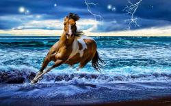 Desktop Wallpaper Gallery Windows Fantastic Horse Computer 1920x1200px