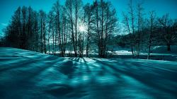 Fantastic Winter Scene In Monochrme HD Desktop Background wallpaper