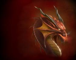 Dragons fantasy-dragon
