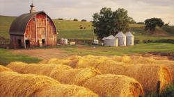 Farm Wallpaper 1080p