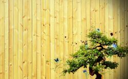 Abstract Fence Bansai