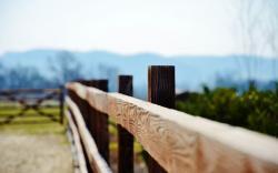 Close-Up Fence Gate Photo