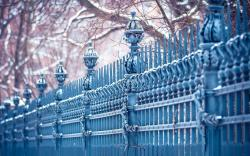Fence Metal Winter City
