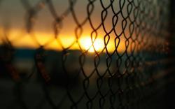 Beautiful Fence Wallpaper