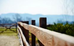 Nature Wood Fence Close Up Wallpaper 19727