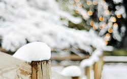 Fence Wood Snow Trees Branches Winter Bokeh Lights Christmas