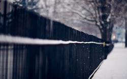 ... Wreaths Branches Spruce Road Snow Snowflakes Winter. Fence Snow Snowflakes Winter