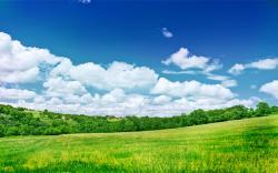 Desktop landscapes obloka, sky, field, trees, nature