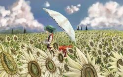 Field Sunflowers Girl Umbrella Anime Art