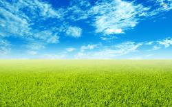 ... Green field wallpaper 1920x1200 ...
