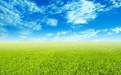 ... Green field wallpaper 1920x1200 ...