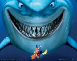 Finding Nemo ...