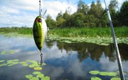 Fishing Wallpaper 488 Best Amazing