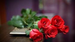 Description: The Wallpaper above is Five Red Roses Wallpaper in Resolution 1366x768. Choose your Resolution and Download Five Red Roses Wallpaper
