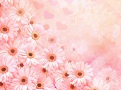 flower backgrounds 9 Cool Backgrounds