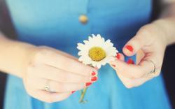 Flower Daisy Girl Mood Photo