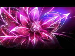 ... pink flower 18 ...