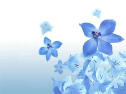 flower wallpapers 7 Cool Backgrounds
