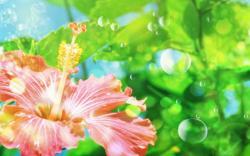 Flower Wallpapers Windows 1217