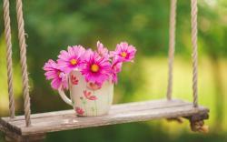 Flowers Cup Swing