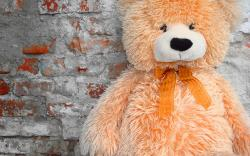 Fluffy Teddy Wallpapers Pictures Photos Images. «