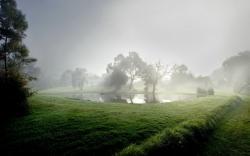 Fog · Fog · Fog · Fog ...
