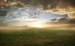 Foggy grassland