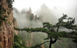 Foggy valley scenery