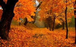 Foliage 35457