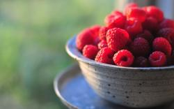 Raspberry Food Bowl Plate Close Up HD Wallpaper