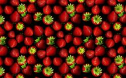 ... Wallpapers Fruit ...