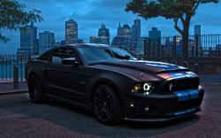 Ford Shelby GT500 Wallpaper Widescreen