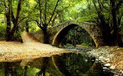 Forest Bridge Backgrounds; Forest Bridge Wallpaper ...