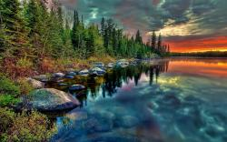 Forest lake sunset stones