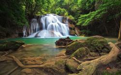 Forest waterfalls Wallpapers Pictures Photos Images. «