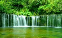 Green Forest Waterfall