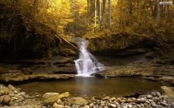 Forest Waterfall Wallpaper 02