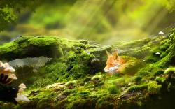 Fox deep sleep art