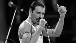 Freddie Mercury 2015 wallpapers Freddie Mercury pics