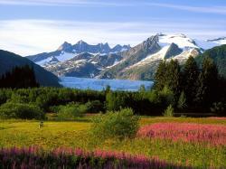 Mendenhall Glacier Alaska wallpaper - Nature wallpapers - Free wallpapers, Desktop wallpapers, Computer backgrounds