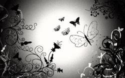 Black And White Wallpaper Picture Photo Widescreen 215 Backgrounds