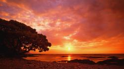 California Sunset Wallpaper